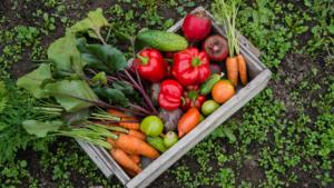 A box of fresh vegetables