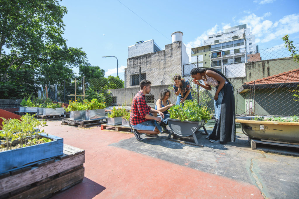 A group of friends gardening on an urban rooftp[